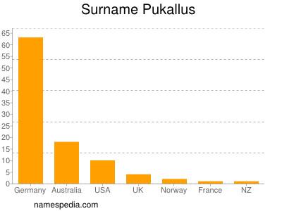 Surname Pukallus