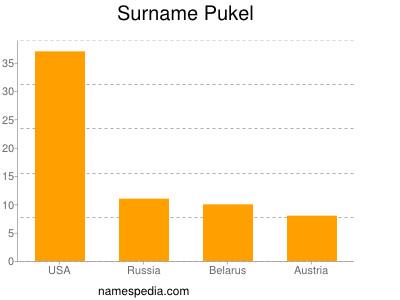 Surname Pukel