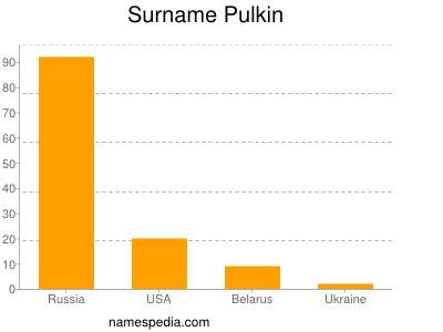 Surname Pulkin