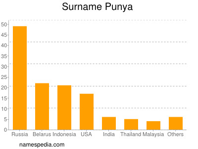 Surname Punya