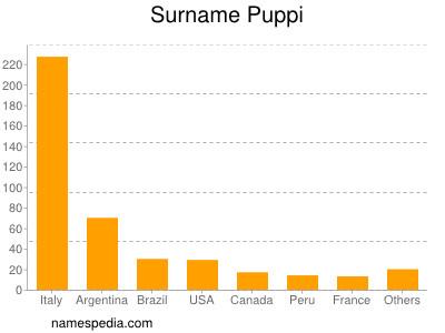 Surname Puppi