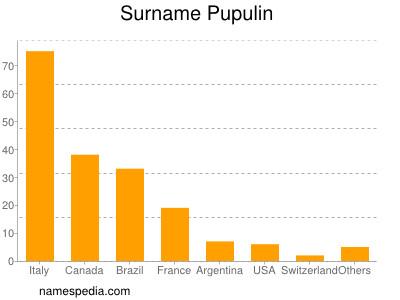 Surname Pupulin