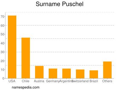 Surname Puschel