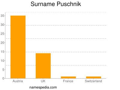 Surname Puschnik