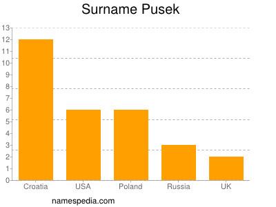Surname Pusek