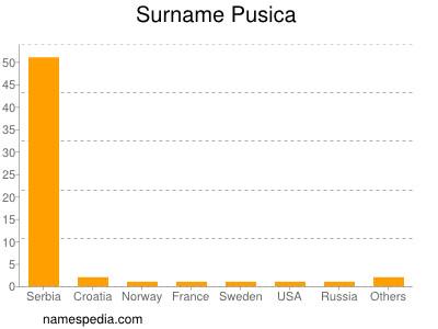 Surname Pusica