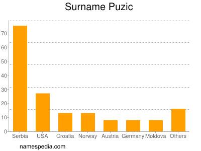 Surname Puzic