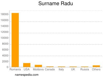 Surname Radu