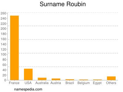 Surname Roubin