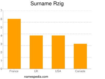 Surname Rzig