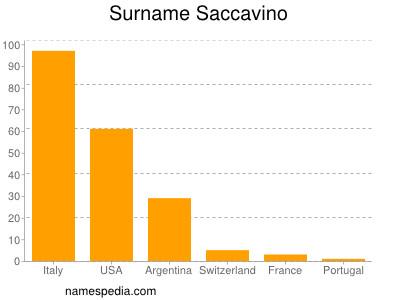 Surname Saccavino