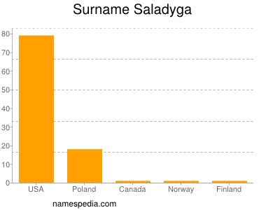 Surname Saladyga