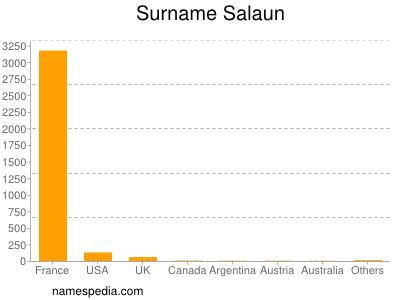 Surname Salaun