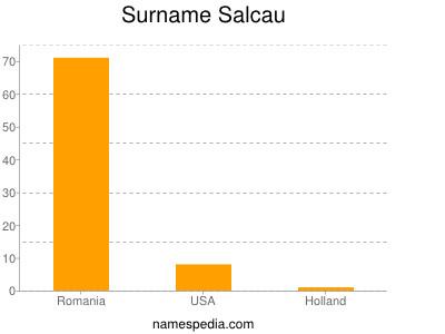 Surname Salcau