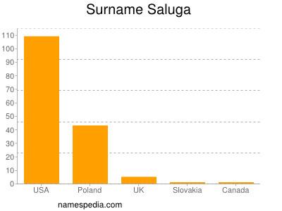 Surname Saluga