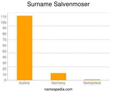 Surname Salvenmoser
