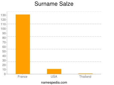 Surname Salze