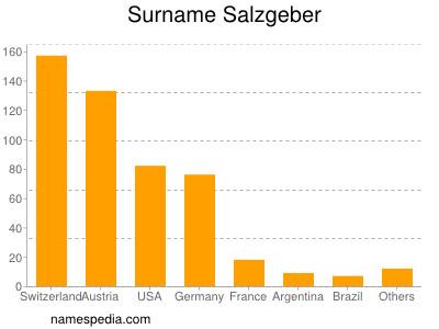 Surname Salzgeber