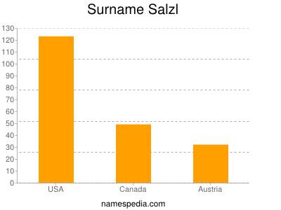 Surname Salzl