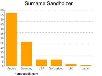 Surname Sandholzer