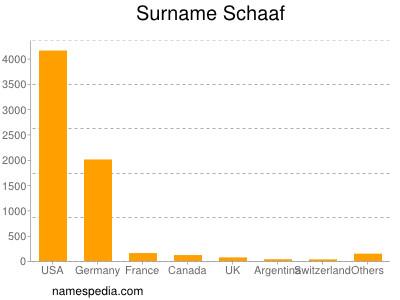Surname Schaaf