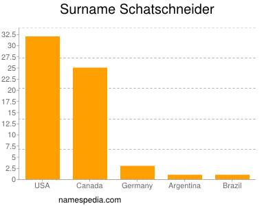 Surname Schatschneider