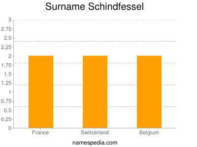 Surname Schindfessel
