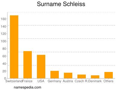 Surname Schleiss