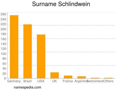 Surname Schlindwein