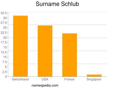 Surname Schlub