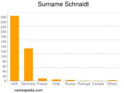 Surname Schnaidt