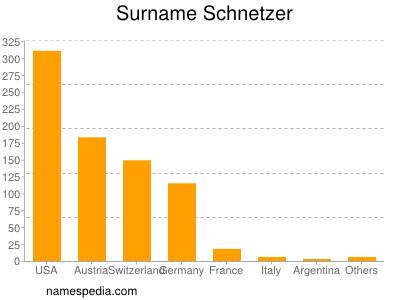 Surname Schnetzer