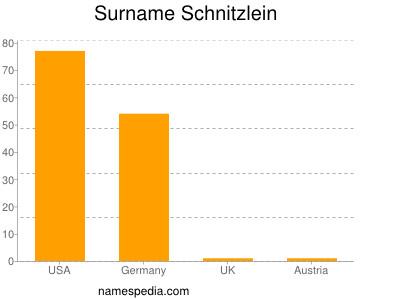 Surname Schnitzlein