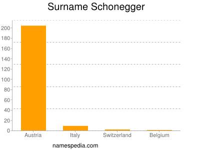 Surname Schonegger