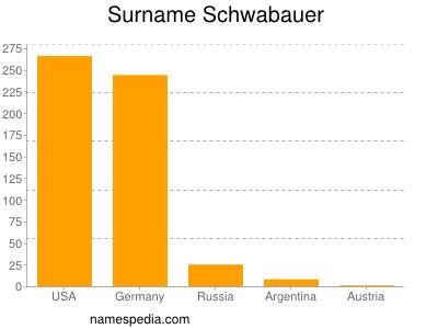 Surname Schwabauer