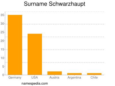 Surname Schwarzhaupt