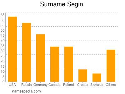 Surname Segin