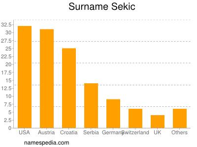 Surname Sekic