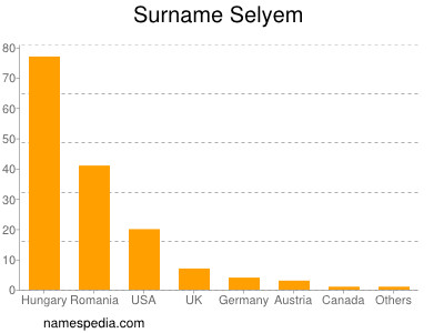 Surname Selyem