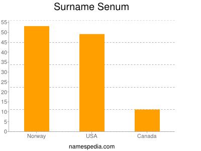 Surname Senum