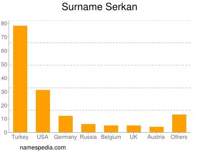 Familiennamen Serkan
