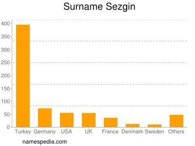Surname Sezgin