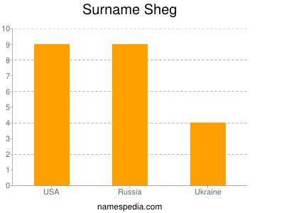Surname Sheg