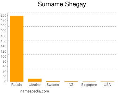 Surname Shegay