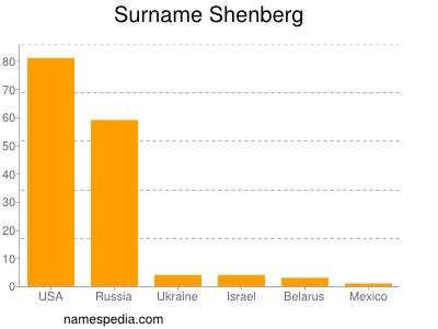 Surname Shenberg