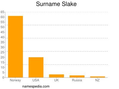 Surname Slake