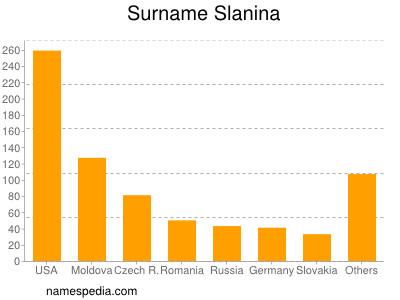 Surname Slanina