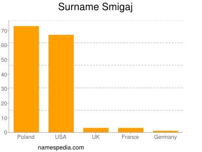 Surname Smigaj
