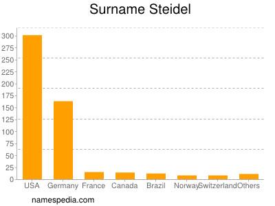 Surname Steidel