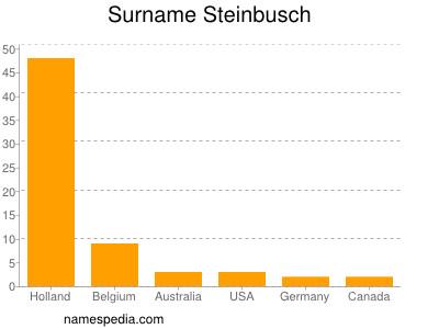 Surname Steinbusch